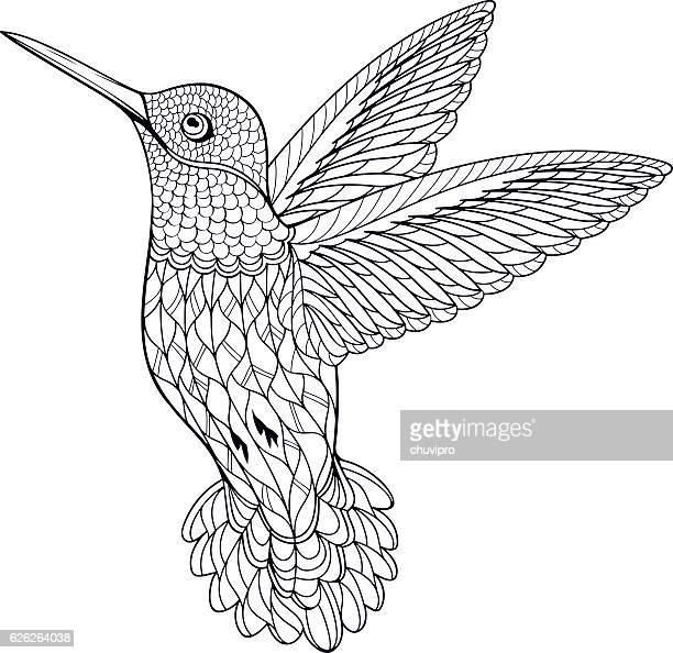 Coloring Page Hummingbird