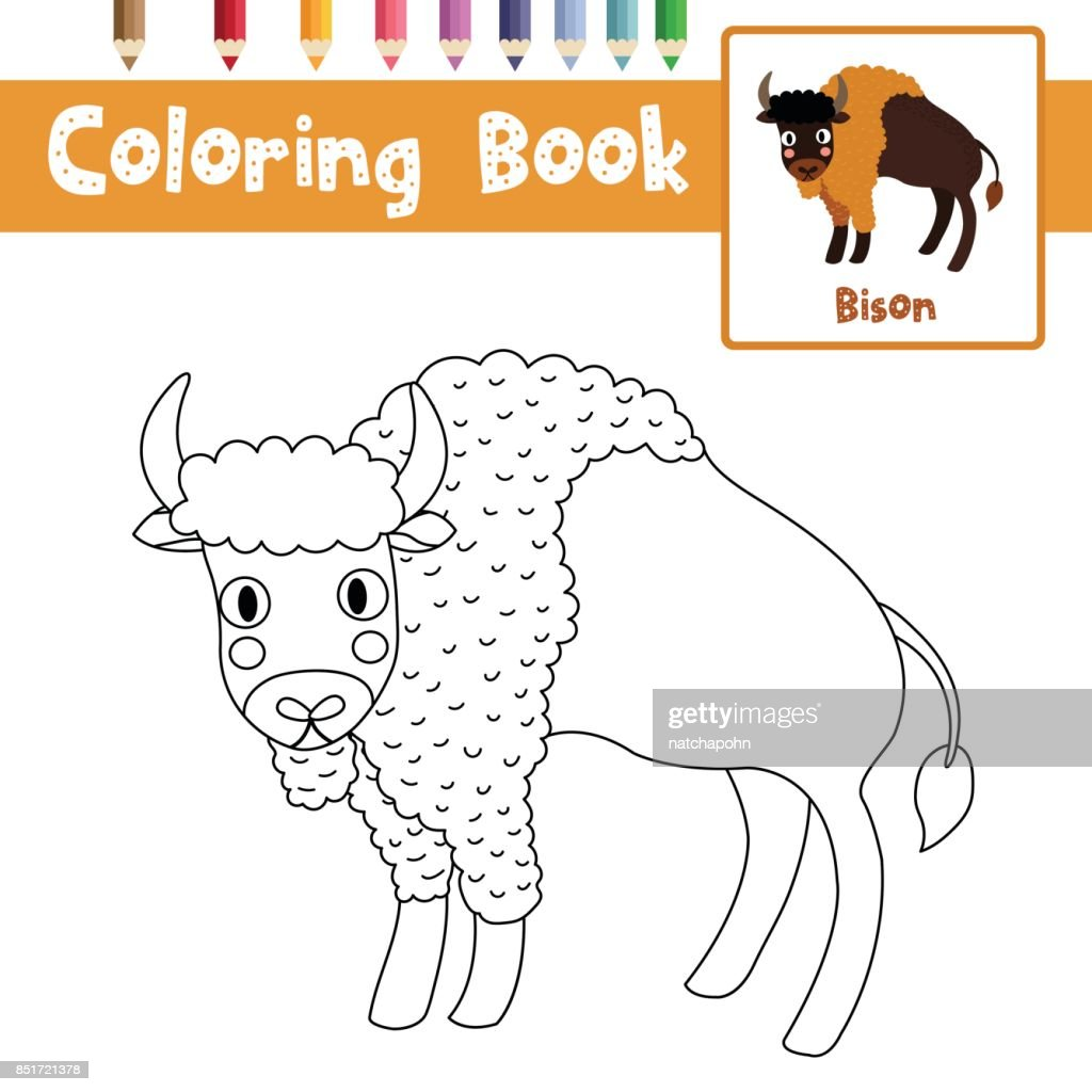 Coloring Page Standing Bison Animal Cartoon Character Vector ...