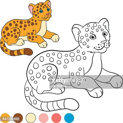 coloring page with colors little cute baby jaguar vector id
