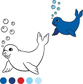 Coloring page with colors. Little cute baby seal swims.
