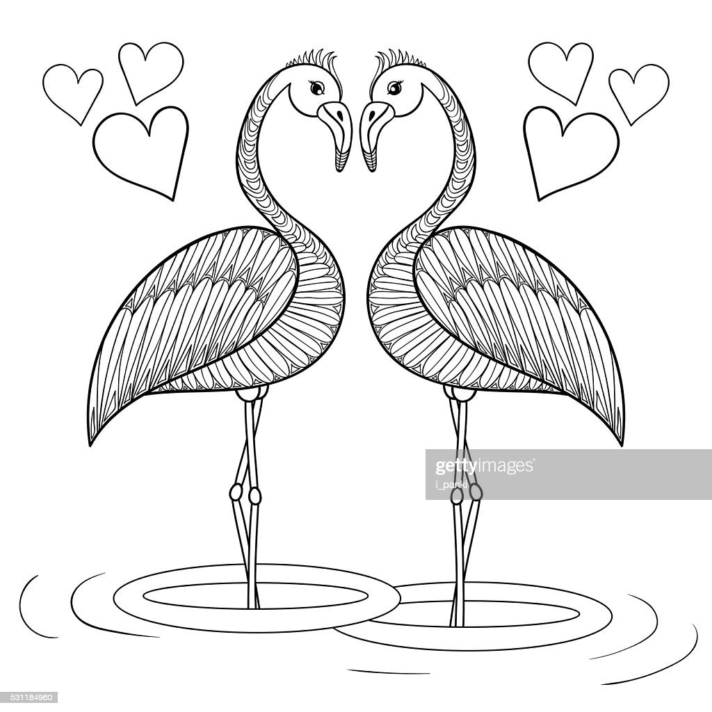 Coloring page with Flamingo birds in love, hand drawin