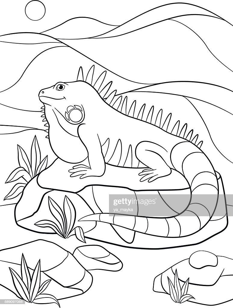 Coloring Pages Cute Iguana Smiles Stock Vektor Art und mehr Bilder ... | 1024x774