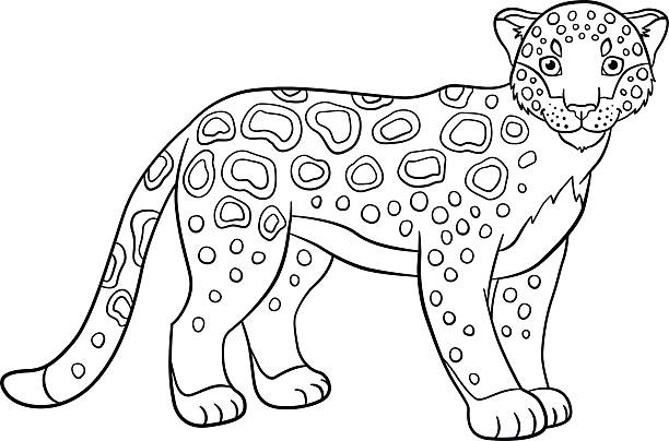 Free exotic coloring Images, Pictures, and Royalty-Free