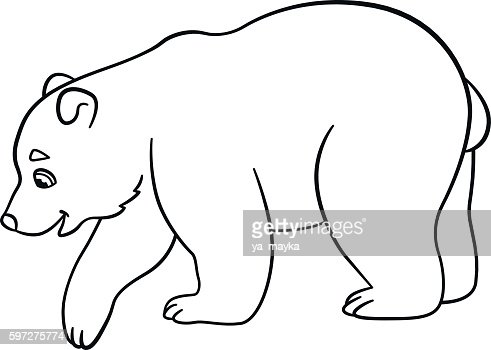 Coloring Pages Little Cute Baby Polar Bear High Res Vector Graphic Getty Images