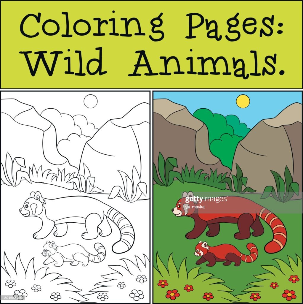Coloring Page Red Panda Little how to print color pictures coloring ...