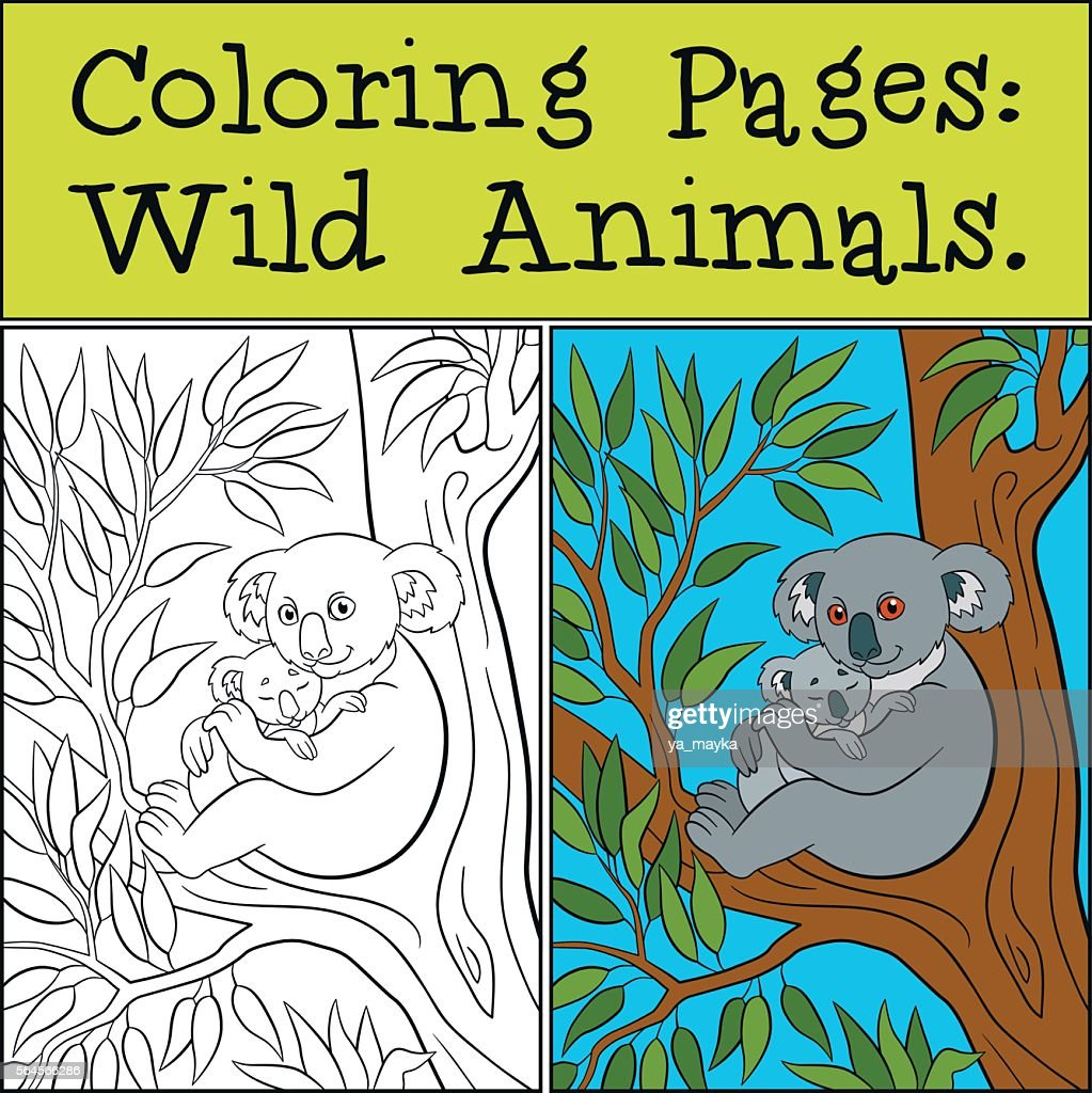 Coloring Pages: Wild Animals. Mother koala with her cute baby.