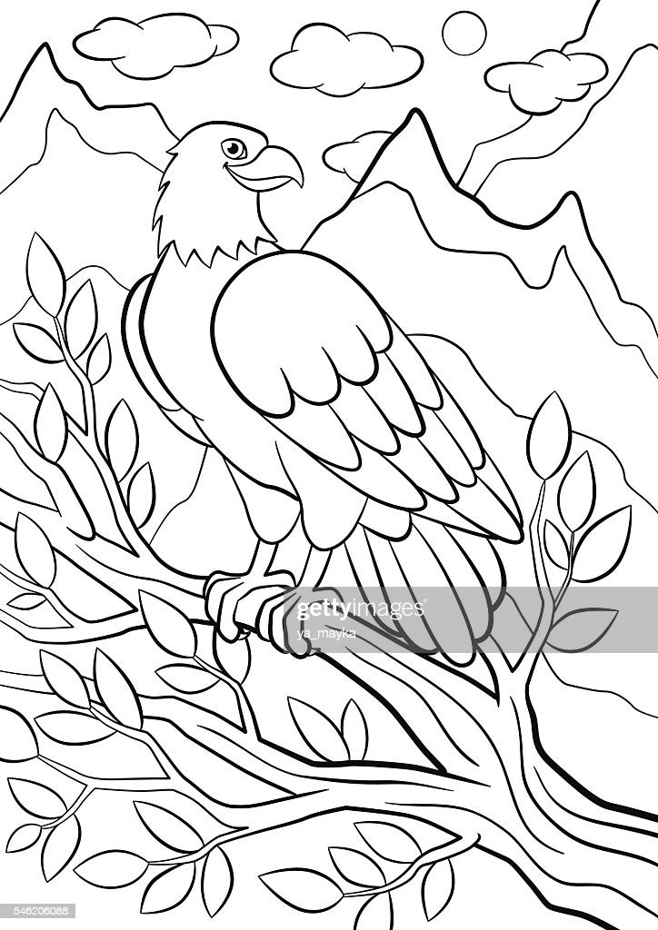 Coloring pages. Wild birds. Cute eagle on the tree branch