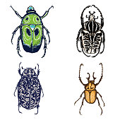 Colour Insect stipple drawing set isolated. Insects and bugs collection in trendy embroidery stippling and hatching, shading style. Vector.