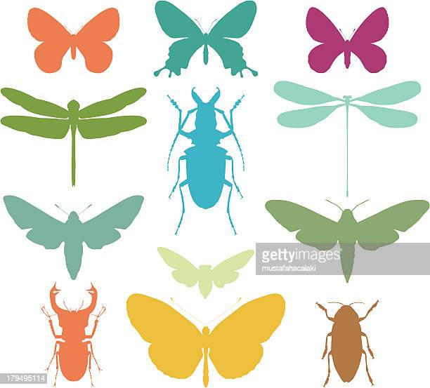Colourful bug silhouettes