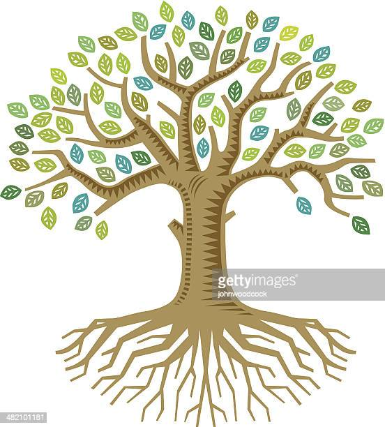 colourful tree - root stock illustrations, clip art, cartoons, & icons