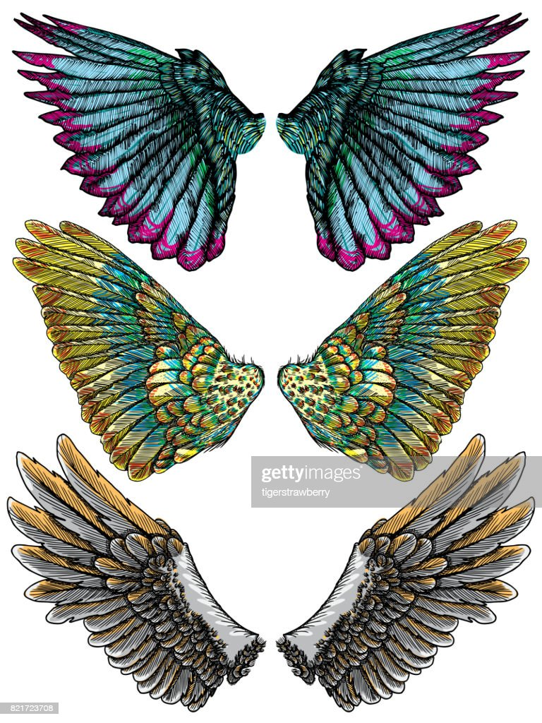 Colourful wings set. Hand drawn detailed colorful wings collection. Vintage tattoo isolated on white background. Design elements for body art concept. Vector.