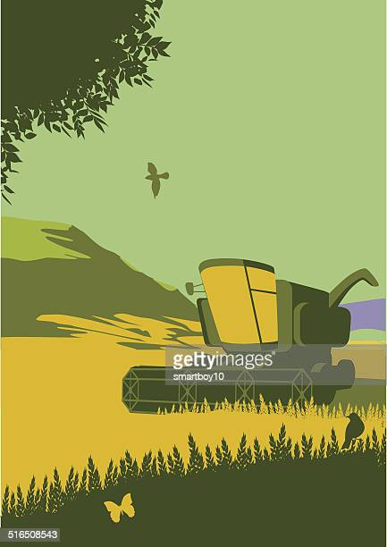 combine harvester in countryside - harvesting stock illustrations