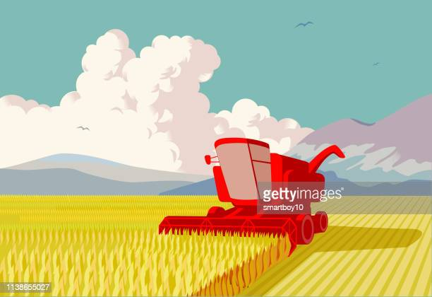 combine harvester - harvesting stock illustrations