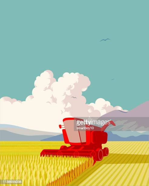 combine harvester - prairie stock illustrations, clip art, cartoons, & icons