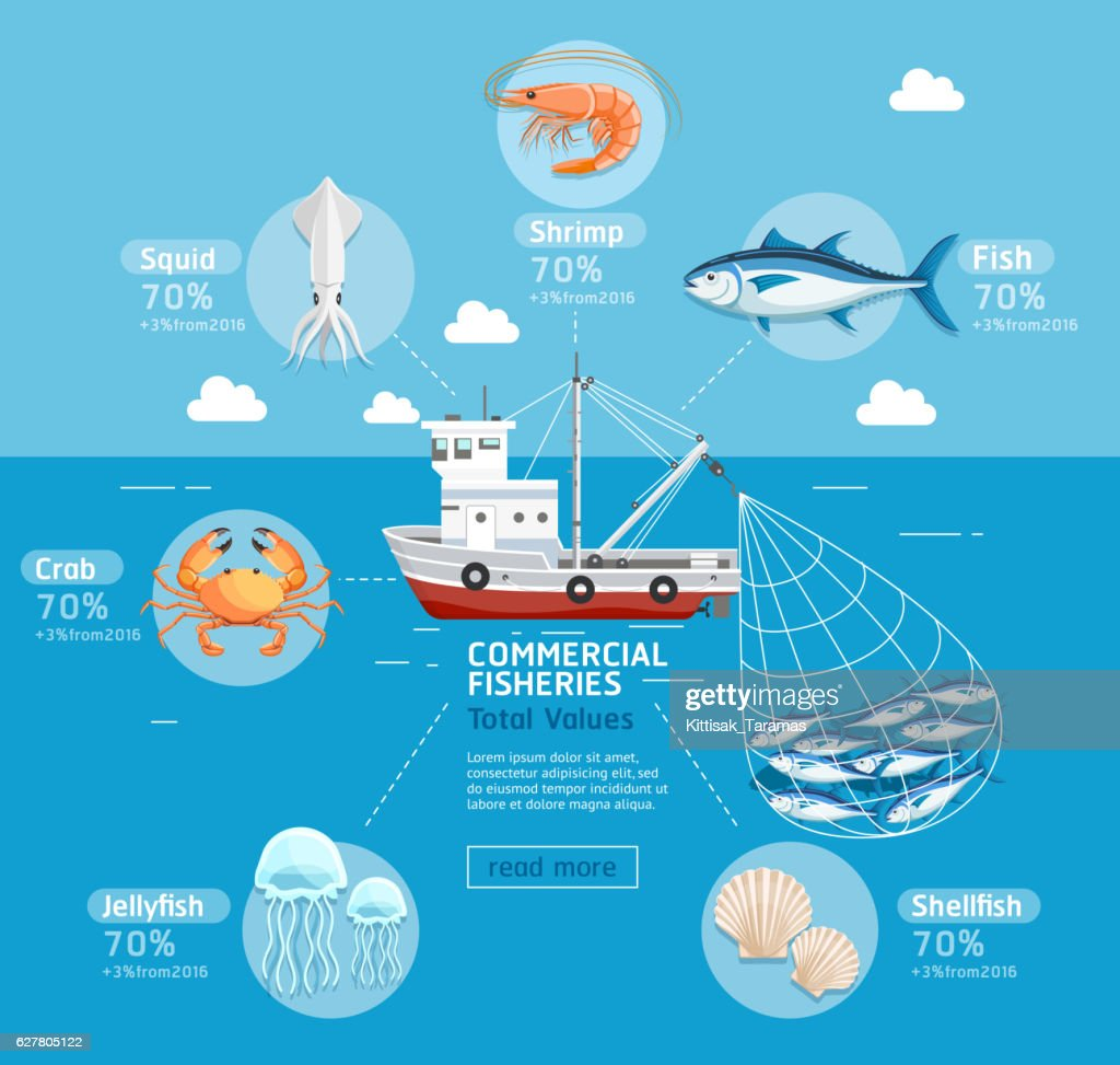 Commercial fishing business plan infographics.