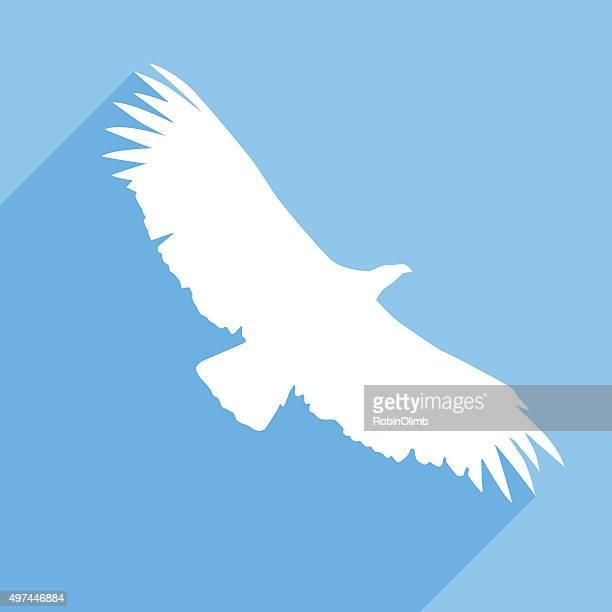 Condor-da-ícone