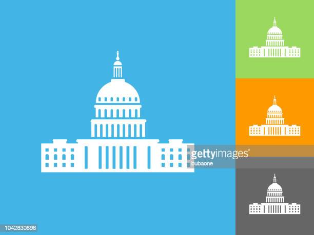 congress  flat icon on blue background - congress stock illustrations