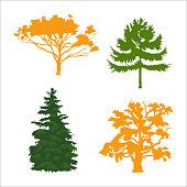 coniferous and deciduous trees