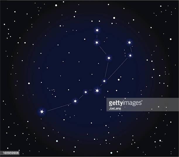 illustrations, cliparts, dessins animés et icônes de constellation aquarius - constellation