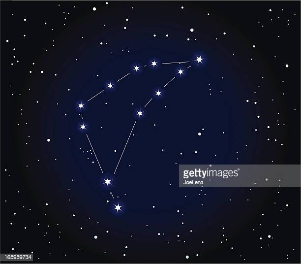 illustrations, cliparts, dessins animés et icônes de constellation de signe du capricorne - signe du capricorne