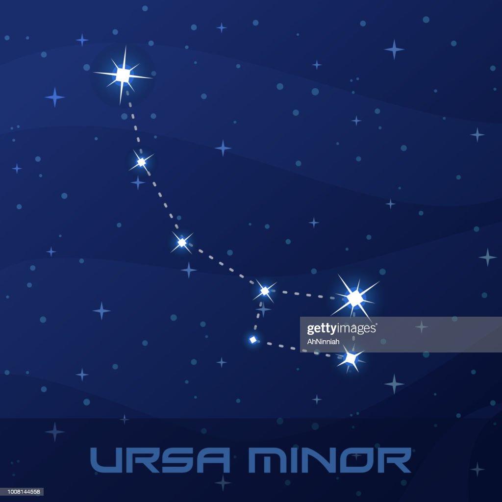 Constellation Ursa Minor, Little Bear