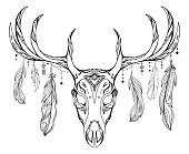 Contour illustration of a deer skull with antlers and feathers