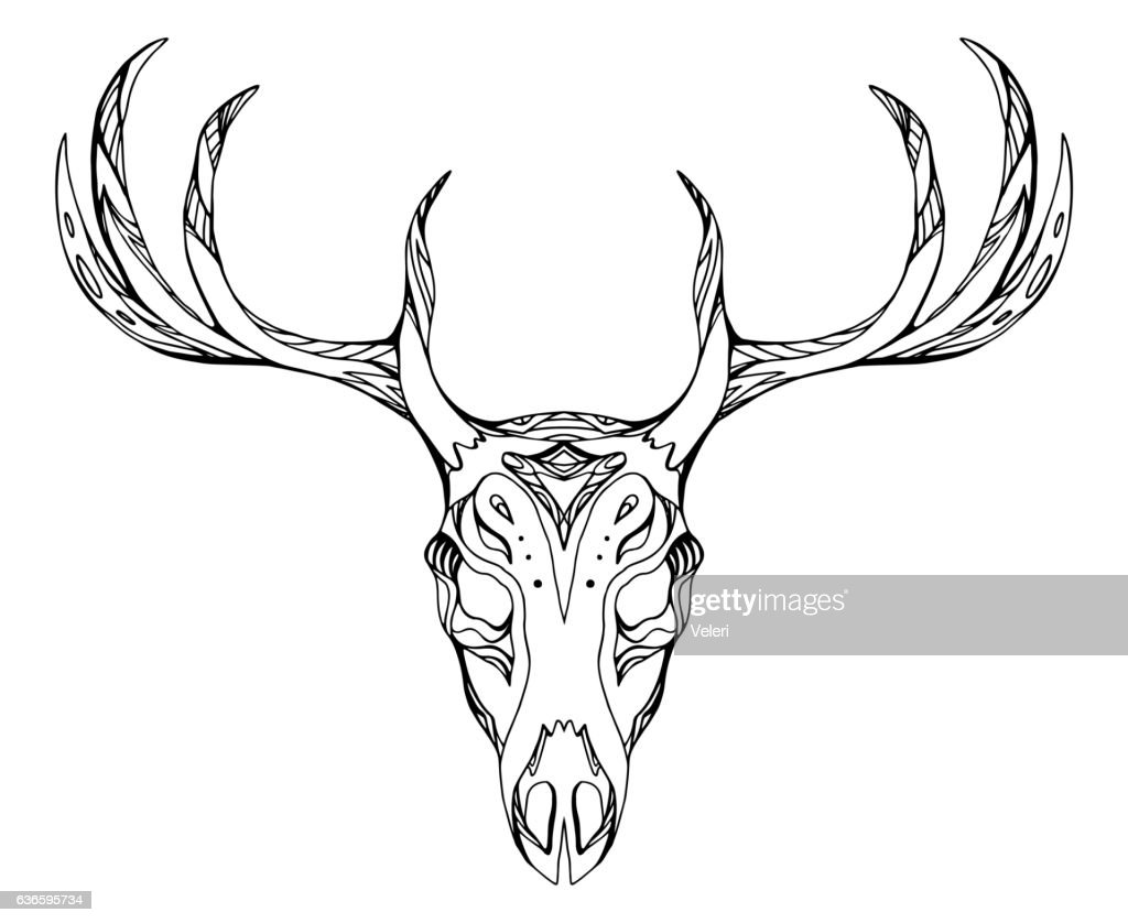 Contour illustration of a deer skull with antlers