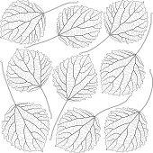 contoured aspen leaves