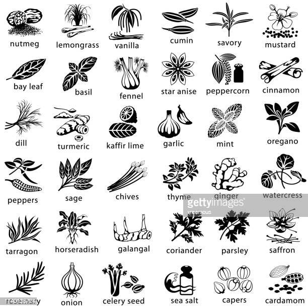cooking herbs and spices icons - spice stock illustrations