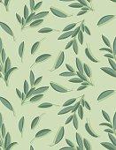 Cooking Herbs Seamless Pattern - Sage