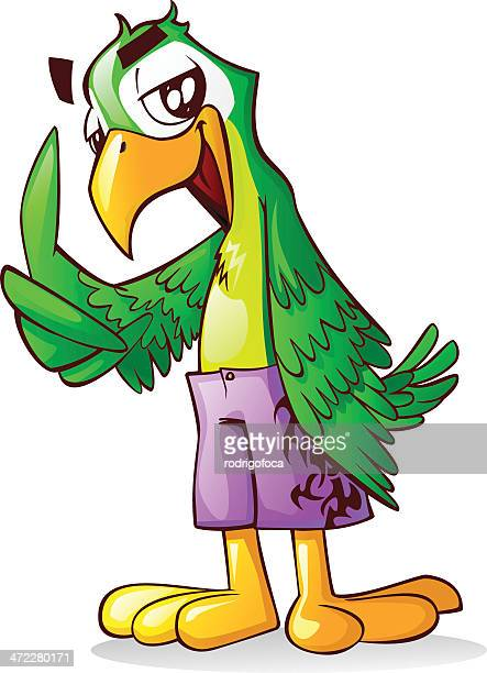 Cool Green Parrot Macaw