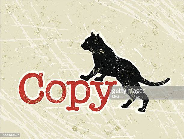 Copy Cat or Copycat Phrase and Text