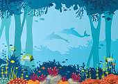 Coral, fish, underwater cave, dolphin and sea.