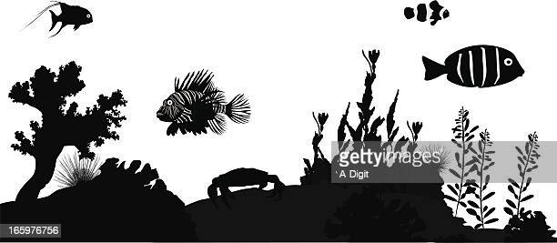 coral'n fish vector silhouette - angelfish stock illustrations, clip art, cartoons, & icons