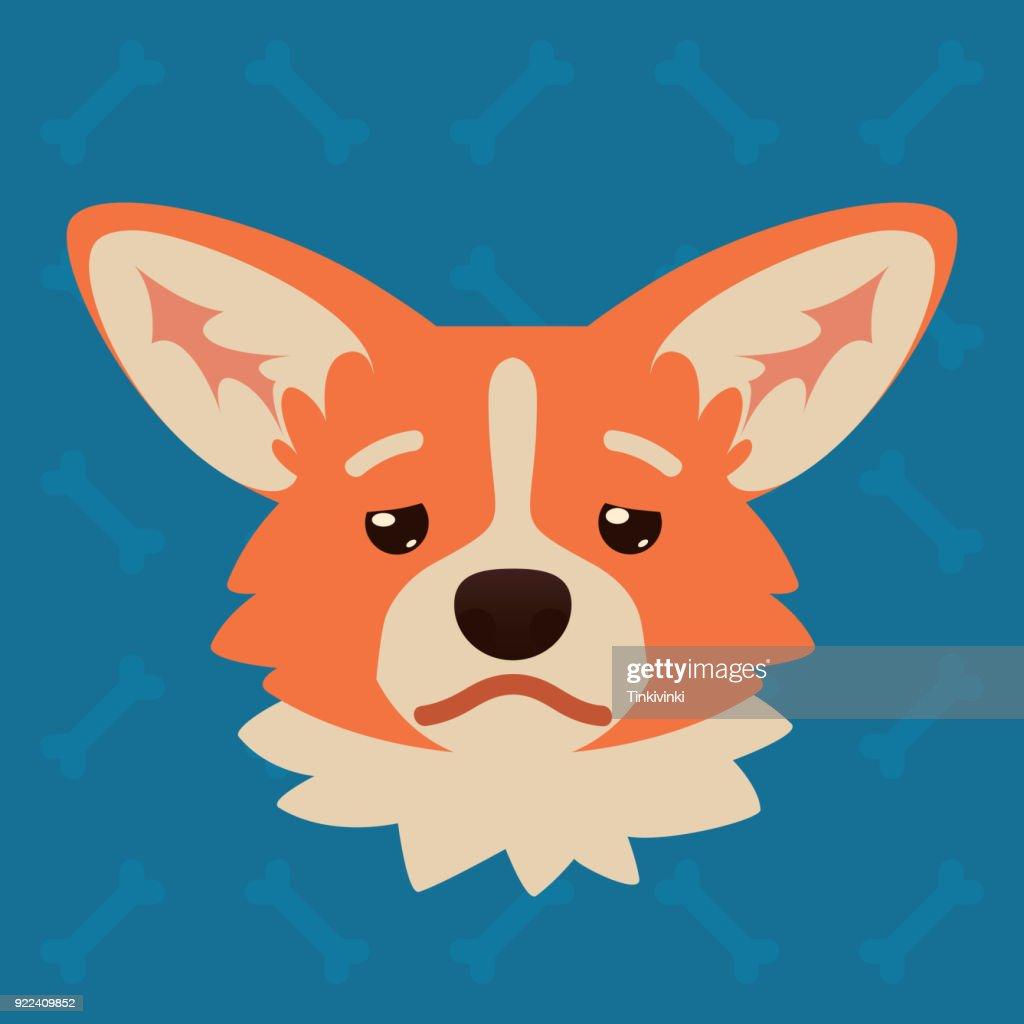 Corgi dog emotional head. Vector illustration of cute dog in flat style shows depressed emotion. Tired emoji. Smiley icon. Chat, communication, print, sticker. Object on blue background. Sadness.