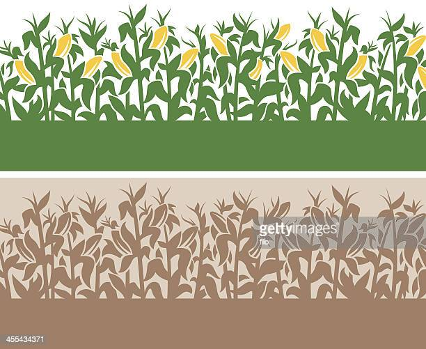 corn background - corn stock illustrations, clip art, cartoons, & icons