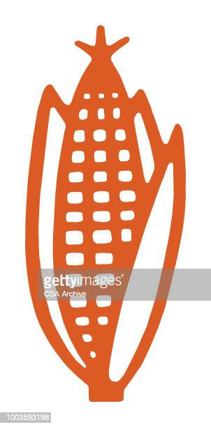 ilustraciones, imágenes clip art, dibujos animados e iconos de stock de mazorca de maíz  - mazorca de maíz