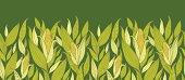 Corn Plants Horizontal Seamless Pattern Background
