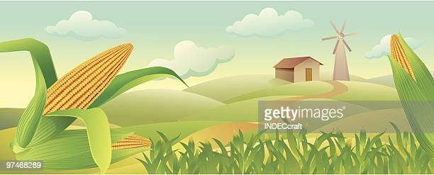 corn_field - corn stock illustrations, clip art, cartoons, & icons