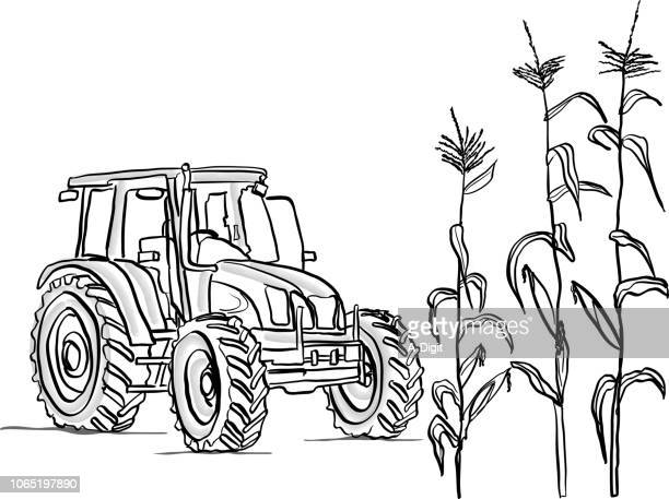 cornfield crop - tractor stock illustrations