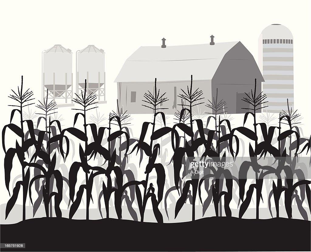 corn stalk silhouette clipart free 20 free Cliparts ...   Cornfield Silhouette