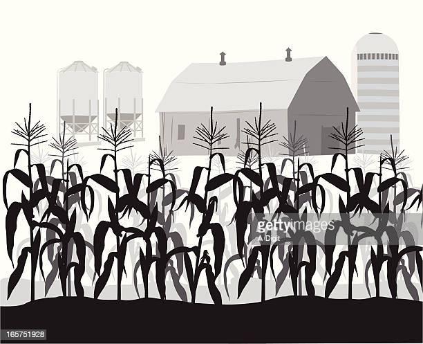cornfield vector silhouette - corn stock illustrations, clip art, cartoons, & icons