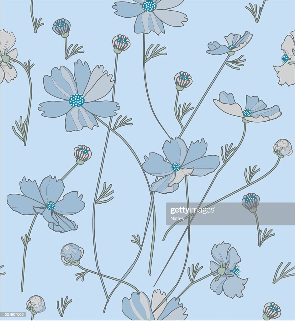 Cosmos flowers in blue and gray