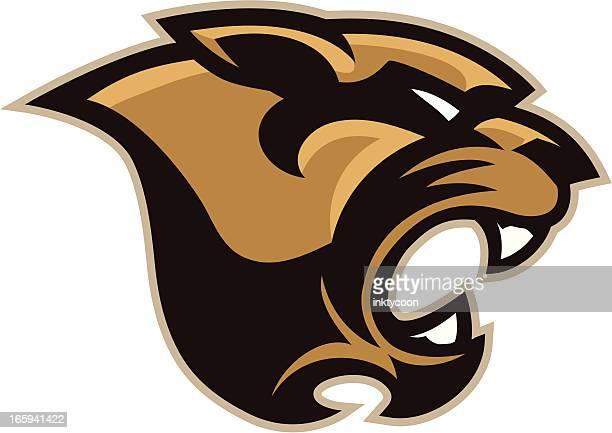 cougar mascot head - mascot stock illustrations