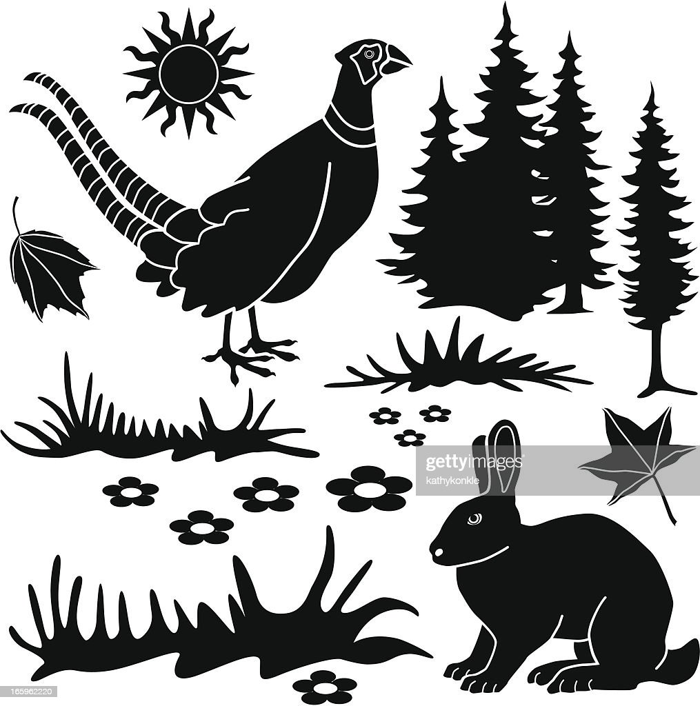 country animals design elements