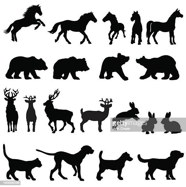 countryside animal group silhouettes - purebred dog stock illustrations