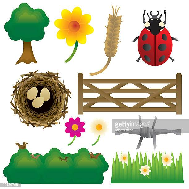 countryside graphics - buttercup stock illustrations, clip art, cartoons, & icons