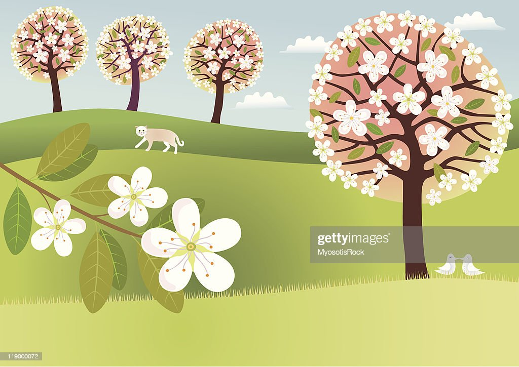 Countryside in blossom
