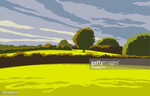 landschaftsszene - hecke stock-grafiken, -clipart, -cartoons und -symbole