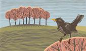 Countryside scene with Blackbird